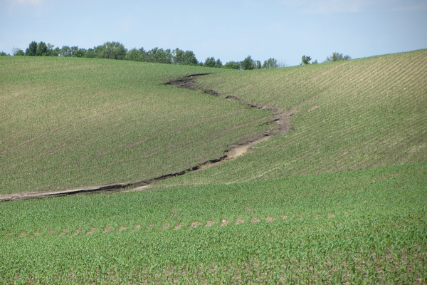 Erosion Control Assistance Available to Landonwers